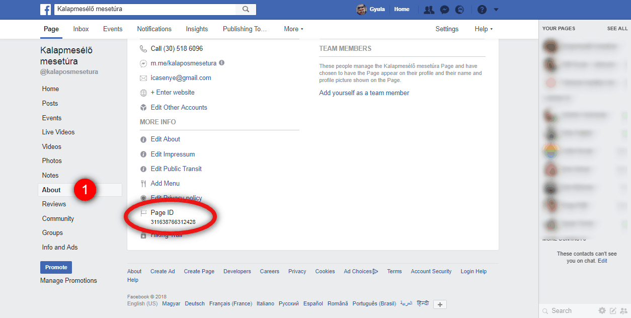 How to Create Custom Audiences for Facebook Ads When Someone Completes a Specific Step/Action in Your ManyChat Bot
